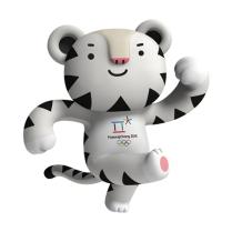 Source (www.olympic.org/pyeongchang-2018)